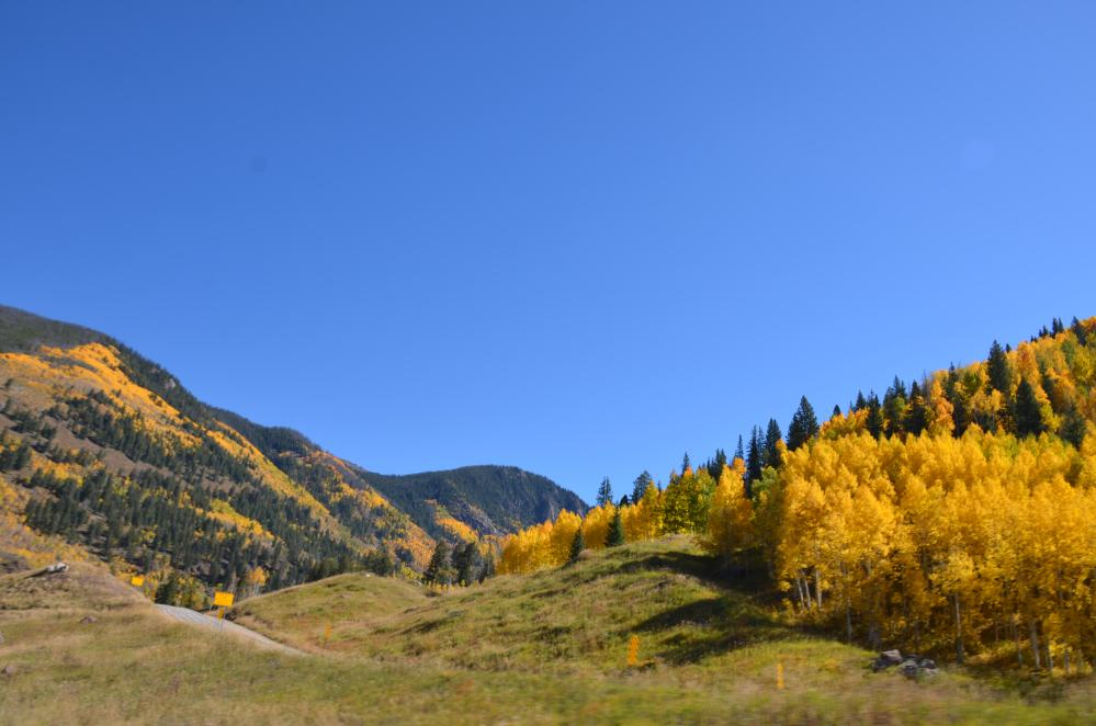 Fall colors in Colorado (2/3)